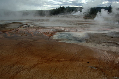Yellowstone Midway Geyser Basin