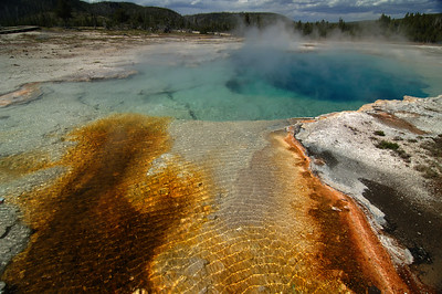 Yellowstone Jewel Geyser 003