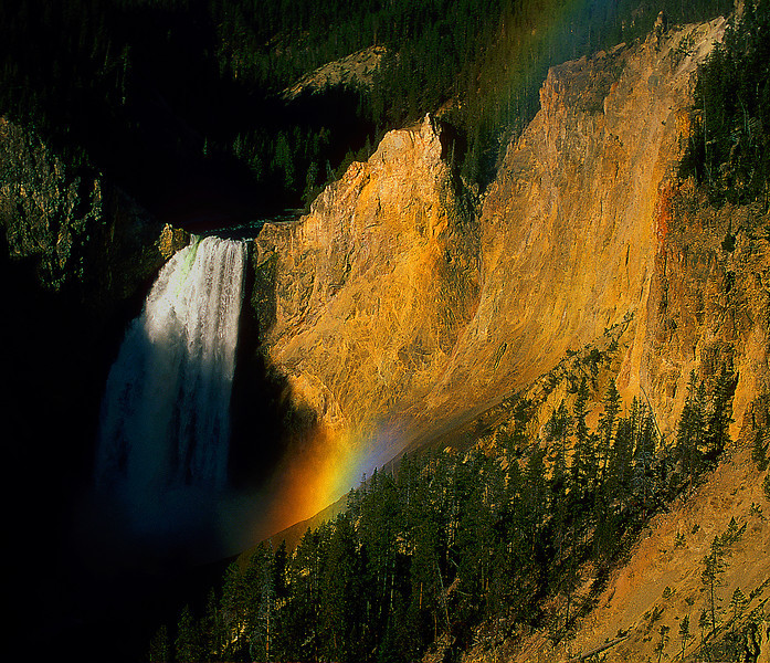 Lower Yellowstone Falls #077
