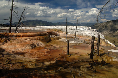 Yellowstone Canary Springs (2)