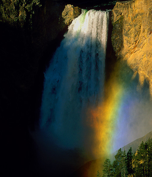 Lower Yellowstone Falls #064