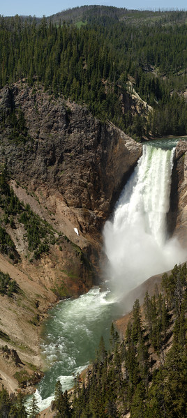 Yellowstone Lower Falls Panoramic