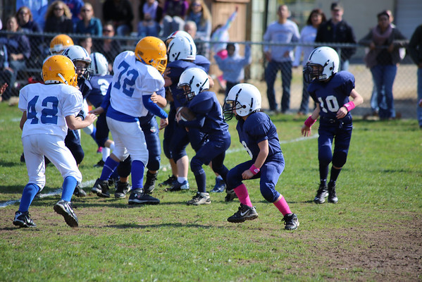 Mites at Rutherford 10-21-12