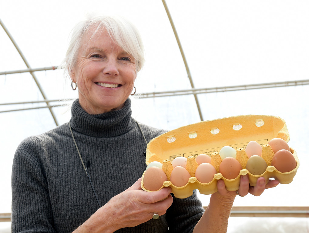 . LYONS, CO - MARCH 6: Betsy Burton with farm fresh eggs at the Lyons Farmette March 6, 2019. (Photo by Lewis Geyer/Staff Photographer)