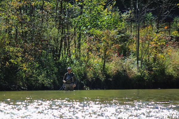 Harald fisker over lavt vand