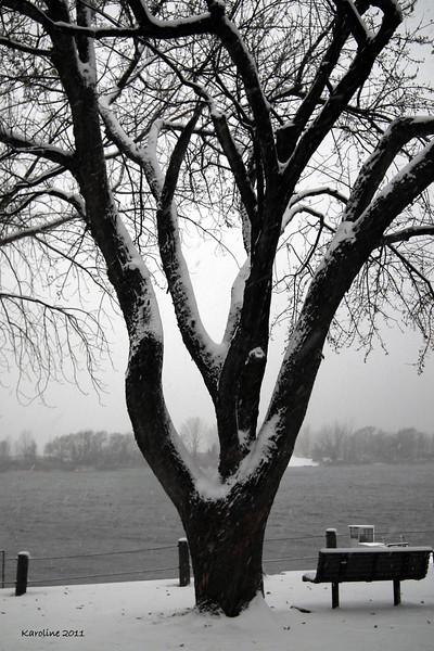 Paysages d'hiver_Winter scenes