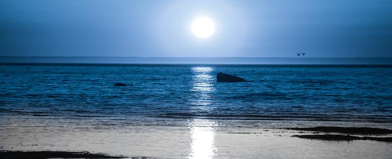 Mer_Ocean