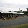 D'Rose Motorcycle Inn in Leakey, TX