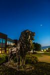 M19196- Evening Campus-7307