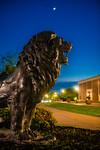 M19196- Evening Campus-7317