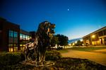 M19196- Evening Campus-7301