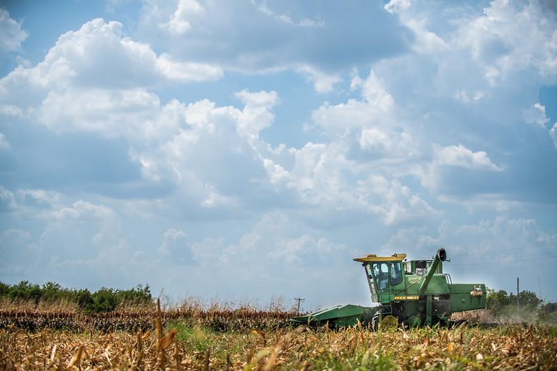 M19219- Greenville Farm-7112