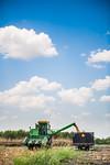 M19219- Greenville Farm-6650