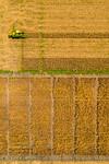 M19219- Greenville Farm-0272