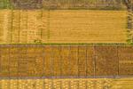 M19219- Greenville Farm-0290
