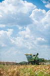 M19219- Greenville Farm-7119