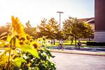 M20125- Campus-1637