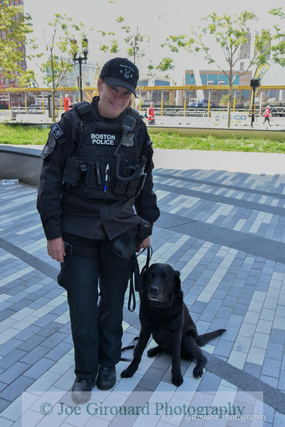 Boston Police K-9 team working the Boston Run to Remember