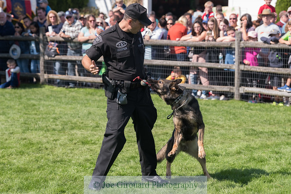 Massachusetts State Police K9 Demo