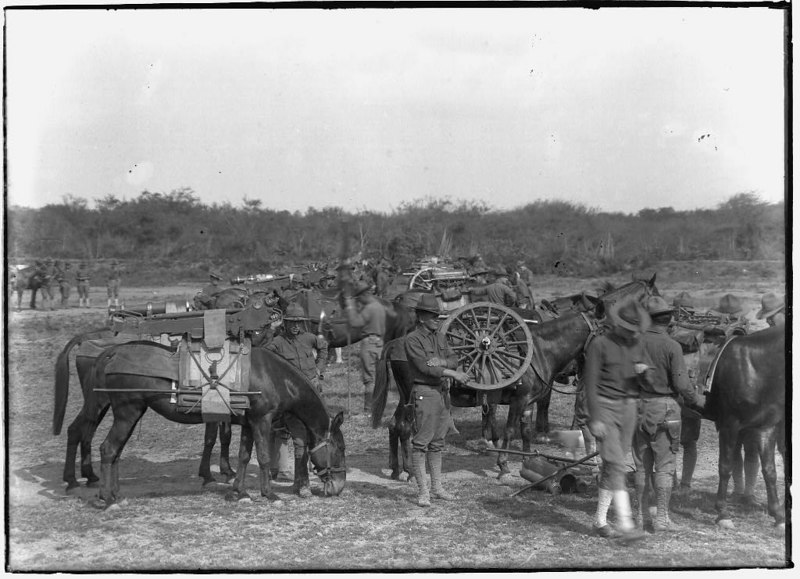 Fort Brown, Artillery maneuvers, pack mules