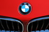 BMW Hood Emblem and Grill