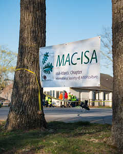 MACISA Tree Climbing Competition