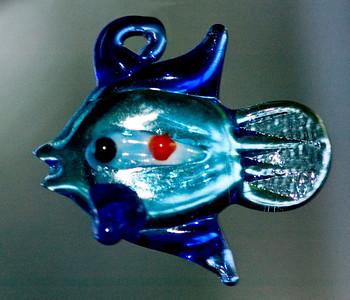 fish DSC_1558a