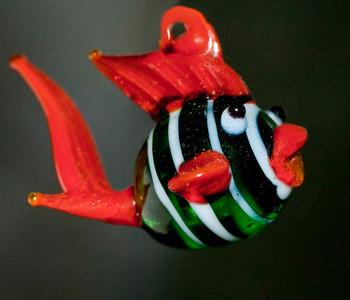 fish DSC_1552a