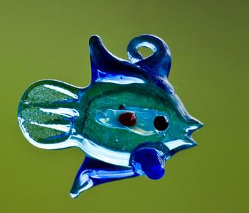 fish DSC_5978a