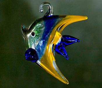 fish DSC_1542crystalfish