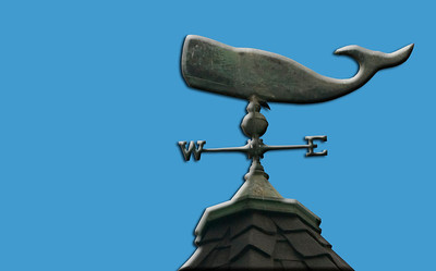 whale wind vane, blue