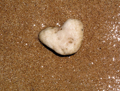 Heart-shaped rock on the beach    North Shore of O'ahu, Hawai'i