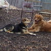 DAKOTA & Maddie 4 apr11