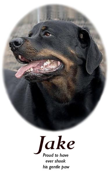 JAKE_100