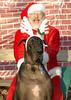 Harley, Santa