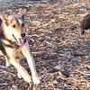 HEATHER & Maddie run