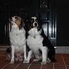 MOM & DAD (dallas & scotty)