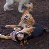 LUNA (cockapoo pup) & RUBY (coonhound pup) (09/11/07)