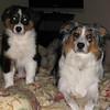 DALLAS (mom) & BOBBI title page
