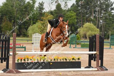 PALMETTO SPORT HORSE CLASSIC AND REGION 14 CHAMPIONSHIPS 2014 AIKEN