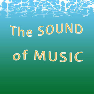 The SOUND of MUSIC. Main Street Theatre. The Sayreville and Old Bridge hills were alive with beautiful music!