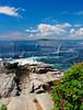ME Cape Elizabeth Two Lights State Park JUNEAG_6210473eMMW
