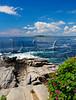 ME Cape Elizabeth Two Lights State Park JUNEAG_6210473fMMW