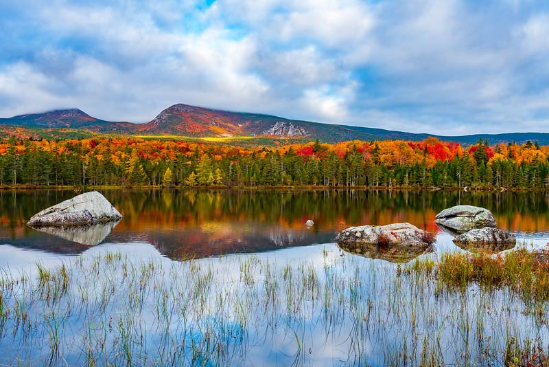 Sandy Pond Reflection