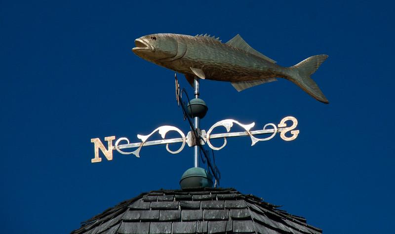 Golden cod weathervane on direction, Yarmouth, Maine