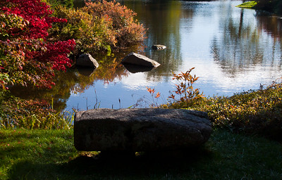 Asticou Gardens, Pebble Point bench overlooking pond toward Peabody Road, Northeast Harbor, Maine, October