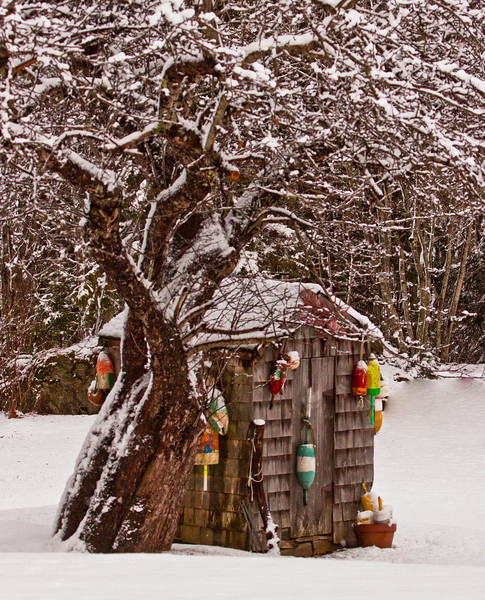 Maine Outhouse in snow with bouys