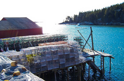 West Point Village, Phippsburg Maine traditional lobster/fishing wharf with lobster traps and bouys.