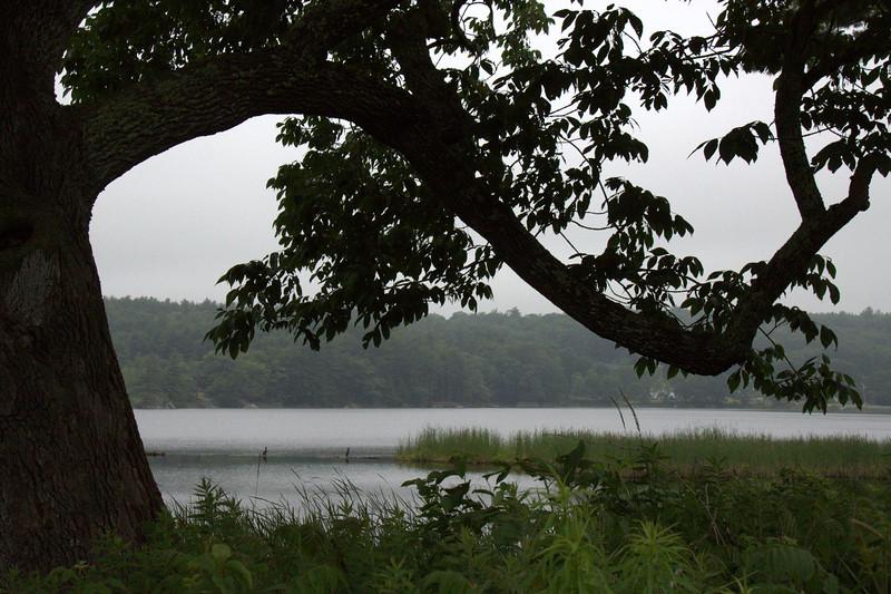 Winnegance Lakeside