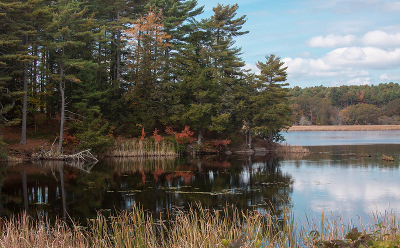 Autumn colors reflected in Winnegance Lake, Phippsburg Maine